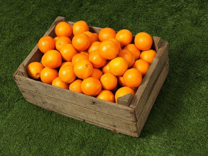 Hizmetlerimiz - 4A Sebze Meyve - Manavgat - SEVKİYAT VE LOJİSTİK TAKİP