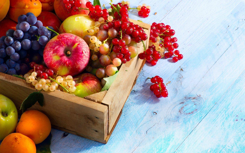 Hizmetlerimiz - 4A Sebze Meyve - Manavgat - ÜRÜN ALIMI VE TAKİBİ